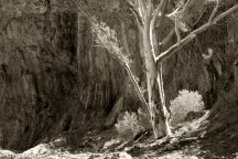 Glass Gorge, Flinders Ranges