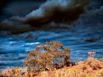 Between Blinman & Angorichina, Flinders Ranges, South Australia