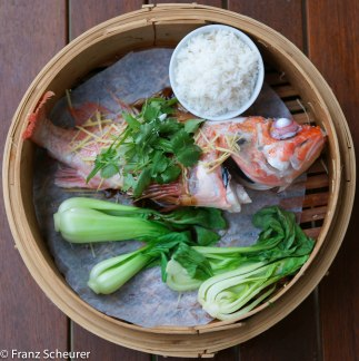 Steamed Whole Ocean Perch with Ginger & Soy – 28 – 914 Cropped