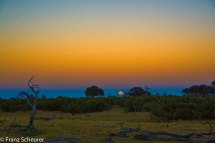Super Moon over Botswana