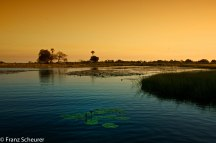 Sunset over Okavango Delta
