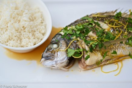 Steamed Whole Bream with Green Chilli and Coriander
